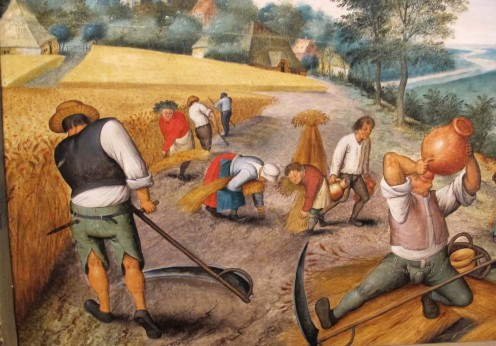 The labor of 17th century where farmers are harvesting crops.