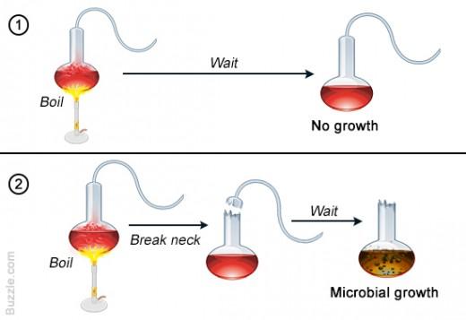 Germ Theory