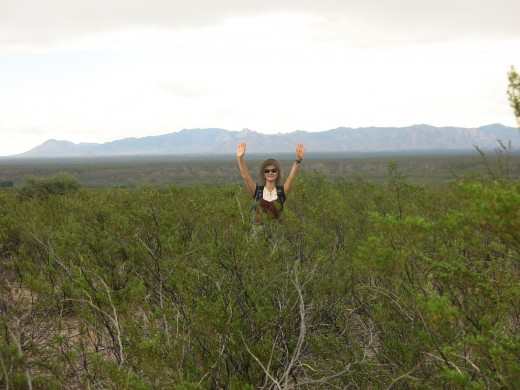 My wife surrounded by Chaparral (also know as Greasewood) with Huachuca Mountains in the distance