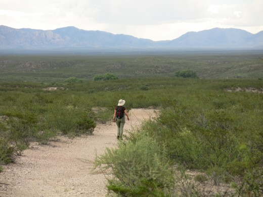 Trail to Presidio Santa Cruz de Terrenate with Huachuca Mountains in the distance