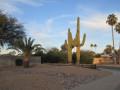 Silver City, NM to Scottsdale, AZ