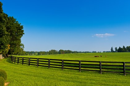 The fenced in pastureland