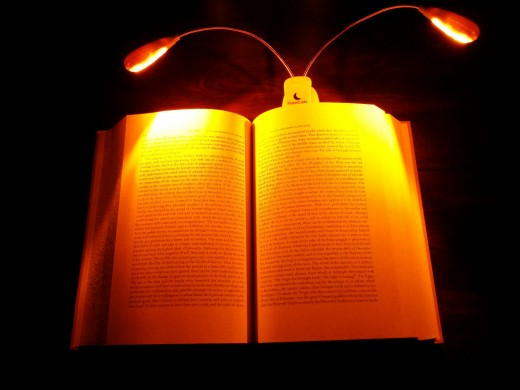 Native Amber LED Book Light