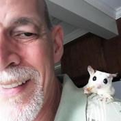Dale Hyde profile image