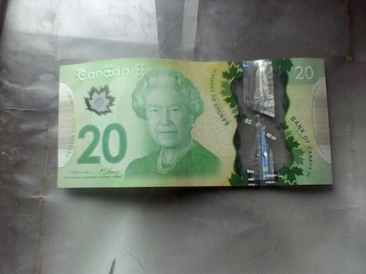 Twenty dollars Canadian.