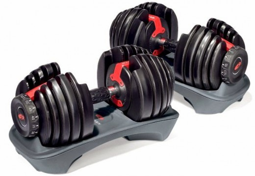 Bowflex Select Dumbbells