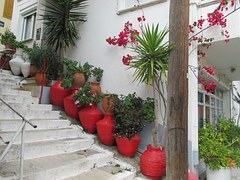 Plants line a stairway.