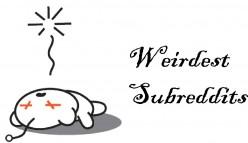 List of The Weirdest Subreddits