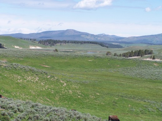The Wyoming countryside