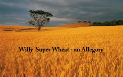 Willy Super Wheat - An Allegory