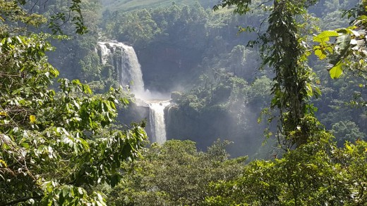 Limunsudan rainforest in Higa-onon territory.