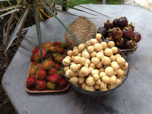 (From left) Rambutan, lanzones, mangosteen, and durian