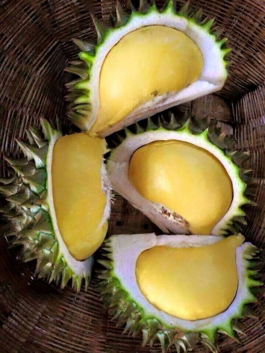 Durian, a heavenly-tasting succulent fruit