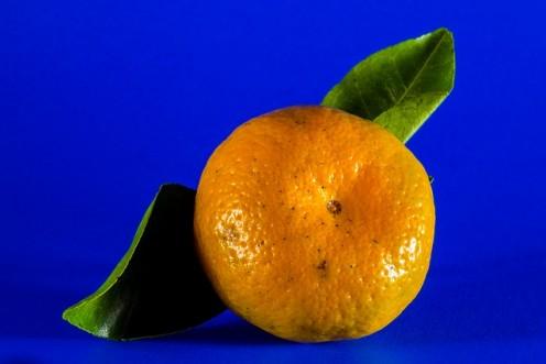 Mandarin Friut