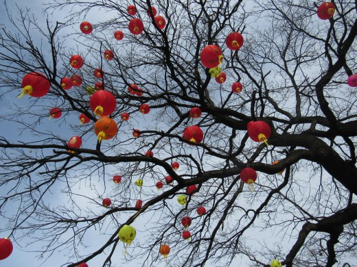Chinese lanterns are inseparable part of celebration of Chinese New Year