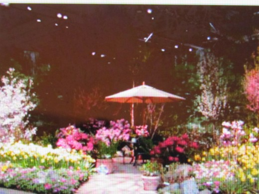 "Photo from The Flower Show website entitled, ""'Backyard Paradise - 2004 Philadelphia Flower Show. A future event during the month of March 5th-13, 2016"