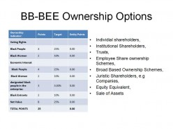 BB-BEE - Ownership Options...