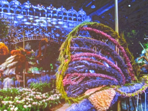"Photo from The Flower Show website entitled, ""In Full Bloom."""