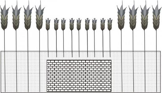 Diagram of negative cropmarks - designed by Weronika Koblynska.