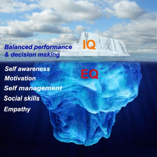 IQ only the tip of the iceberg in the business world