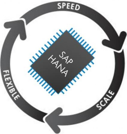 SAP HANA for Speed, Flexibility and Scale