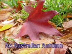 An Australian Autumn