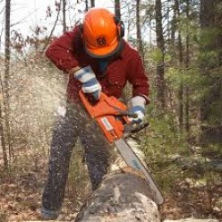 4 Things to Know Before Operating a Chainsaw