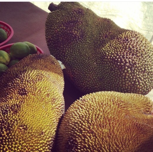 You can find the coolest fruit, like these gigantic jack fruits! Most vendors are happy to give you samples! Your kids will have a blast trying or watching you try these interesting produce!