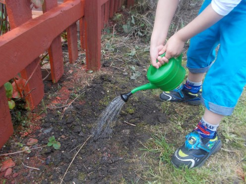 The kids can help with the watering!