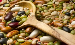Nature of Pulses-Corn, Black Eyed Beans, Kidney Beans
