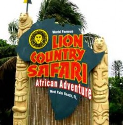 Lion Country Safari: Drive-Thru Safari Park in Florida