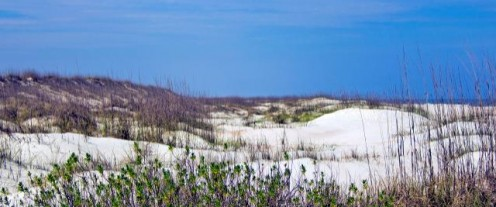 White Sand Beaches of Anastasia State Park