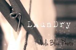 Fine Art Photography from Lulu Blue Photography now available!