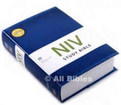 Do you trust the New International Version (NIV) Bible?