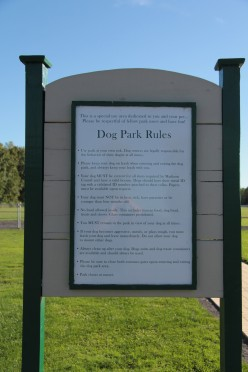 Large And Small Sized Dogs, Some Exceptional Dog Parks