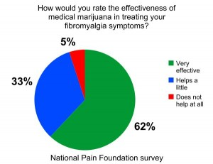 National Pain Foundation Survey Results