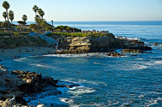 Children's pool in La Jolla CA is a wonderfully calm beach to bring the kids to play.
