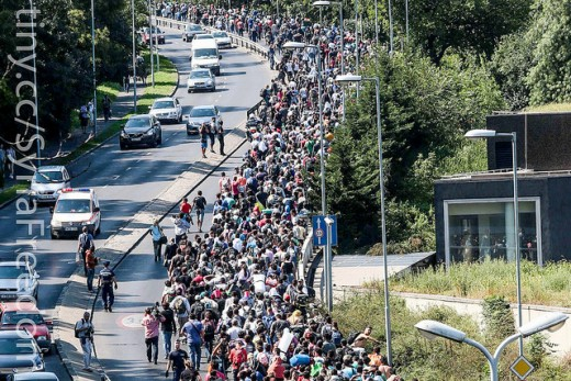 Mass migration coming your way