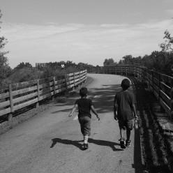 The Fatherhood Project