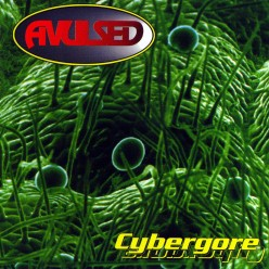 A Review of the album Cybergore by Spanish Death Metal band Avulsed You Will Want To Listen To This Album!