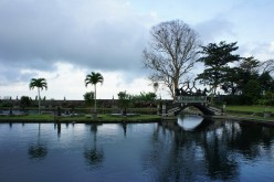 Tourist Attractions and Things to Do in Bali