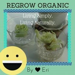 Lettuce Regrow