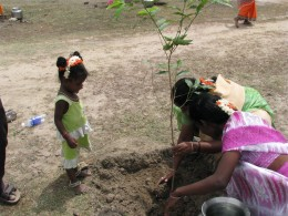 Planting a tree in India.