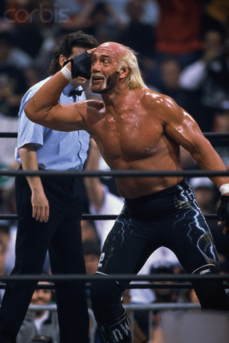 """Hollywood"" Hulk Hogan, head of nWo formed in 1997."