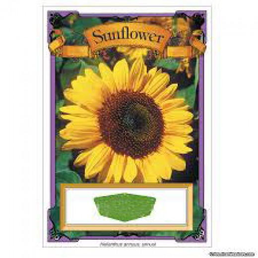Seed packets will have planting instructions printed on the back side.