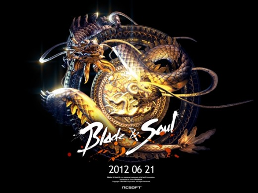 Image from the Blade and Soul Dojo