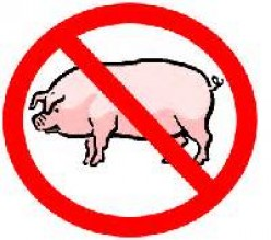 Why is pork-gelatin allowed in foods and other oral products?