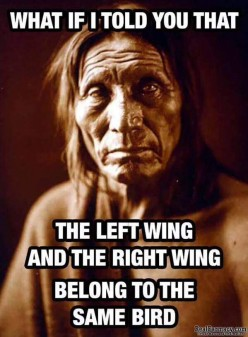 What if I told you that the left wing and the right wind belong to the same bird?