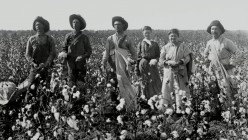Invention of the cotton gin  created a big  economic boom in the early lives of American farmers.