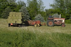 Harvesting hay is but one job to do on a thriving farm.